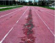 Problema impianti: Piste in via d'estinzione, l'urlo di dolore della Virtus Atletica Bologna