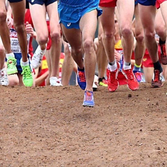 Risultati prima prova regionale Campionati di Società di corsa campestre