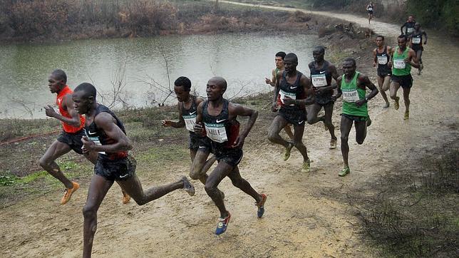 La diretta streaming del Cross de Itálica con i migliori runners del Mondo