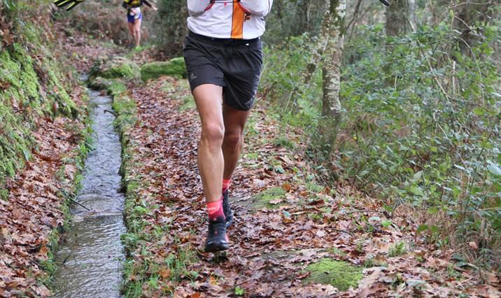 Runner malmenato dal padrone perché investe un cane mentre corre una maratona