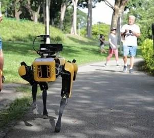 Anche un cane robot a caccia dei runner che non rispettano il distanziamento sociale, succede a Singapore!