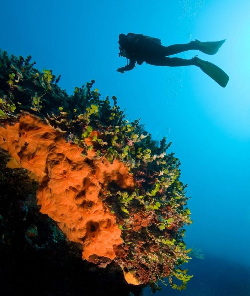 3 Of The Best Scuba Diving Spots In Italy