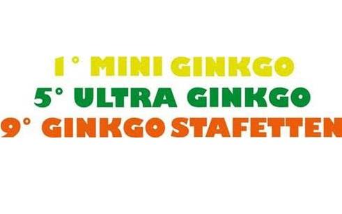 GINKGO: A CASTELLO DI FIEMME CE N'È PER TUTTI I GUSTI, RUNNERS IN FESTA CON STAFETTEN, ULTRA E MINI